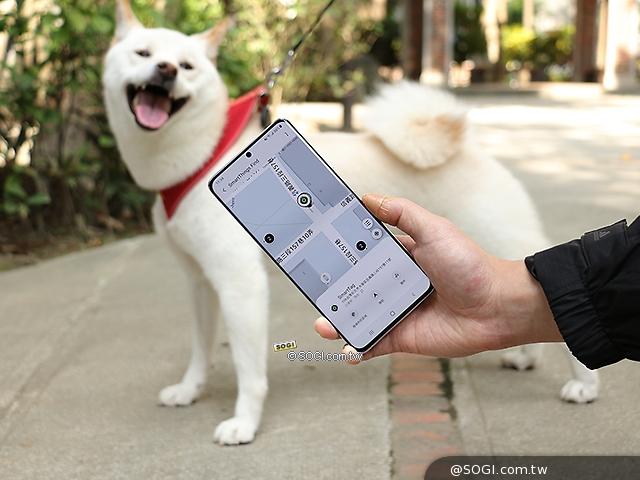 SmartTag找到狗狗!