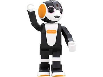 SHARP RoBoHoN SR-04M-Y